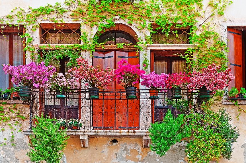Dārza kompozīcija uz balkona